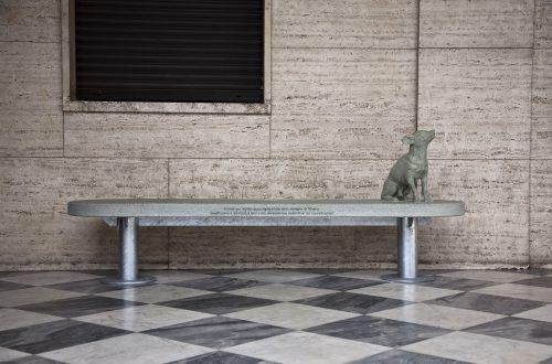 Il cane qui ritratto appartiene a una delle famiglie di Trivero. Quest'opera è dedicata a loro e alle persone che sedendosi qui ne parleranno.